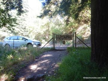 redwood tr