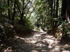 prince trail