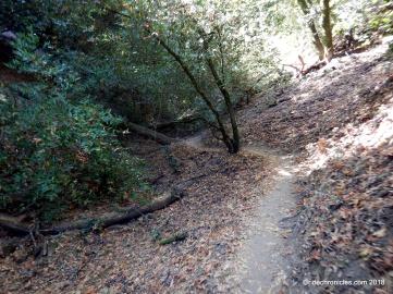 no name trail