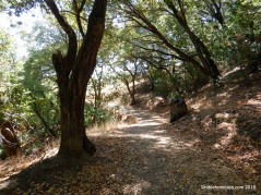 spengler trail