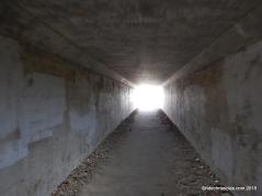 tunnel under roadway