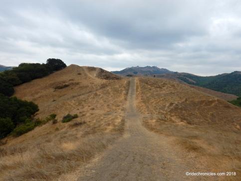 old moraga ranch trail