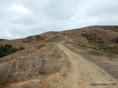 old moraga ranch tr