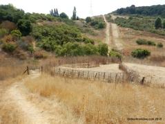 old moraga ranch tr