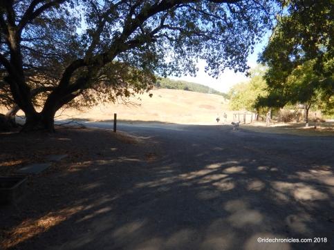 alhambra creek tr