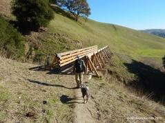 shady slope tr