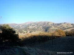 ohlone wilderness tr