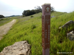 curry canyon rd