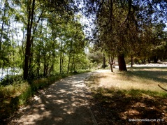 path thru park