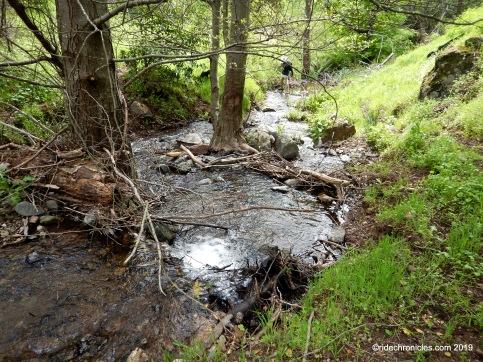 mountain springs creek