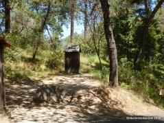marshall's cabin